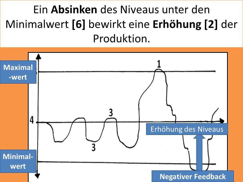 Ein Absinken des Niveaus unter den Minimalwert [6] bewirkt eine Erhöhung [2] der Produktion.